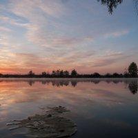 Озеро :: Ольга Барчан