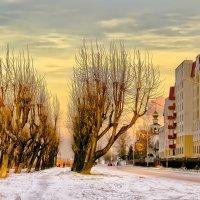 Морозный закат :: Виктор Заморков