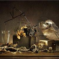 Рыбная ночь :: Lev Serdiukov