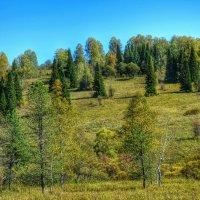 Природа Горной Шории :: Милешкин Владимир Алексеевич