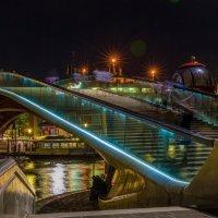 Стеклянный мост. Венеция :: Владимир Леликов