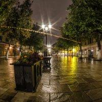 После дождя :: Роман Шершнев