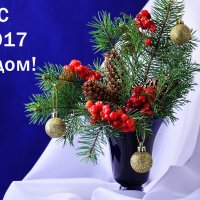 Новогодняя открытка :: Татьяна Евдокимова