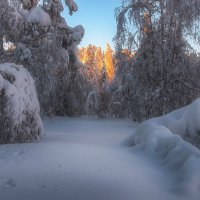 Снежное царство :: vladimir Bormotov