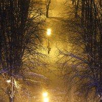 Снежный декабрь :: Наталья Тимошенко