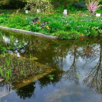 Весна и её отражение :: Nina Yudicheva