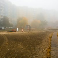 Утро :: Вадим Шинкарь