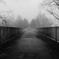 По мостику в туман :: Alexander