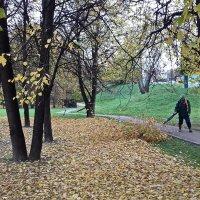 Еще недавно листву сдували, а нынче снегом замело... :: Николай Дони