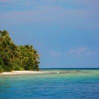 На рифе :: евгений васильев
