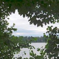 Взгляд на озеро :: Вера Щукина