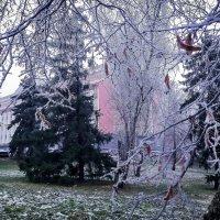 25 ноября... Утро... :: Копыткина Юлия