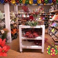 Рождественские и новогодние декорации :: Nina Yudicheva