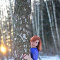 В зимнем лесу :: Яна Шахова
