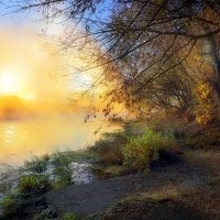 Туманные рассветы осени.... :: Андрей Войцехов