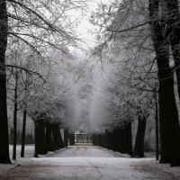 Зимний парк.. :: Эдвард Фогель