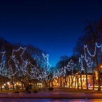 В ожидании Нового года :: Леонид Соболев
