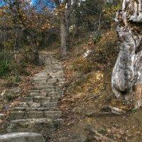 Страж Фиолентовской лестницы :: Игорь Кузьмин