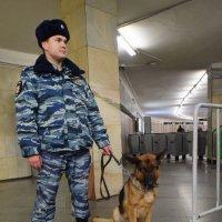 Надежная охрана. :: Татьяна Помогалова