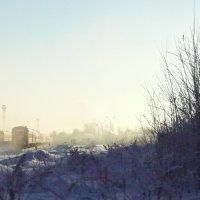 Морозным днём :: Виктор