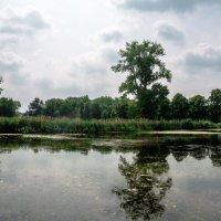 Озеро рядом с замком Хунсбурк, Голландия :: Witalij Loewin