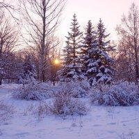 Всюду снег, кругом всё тихо, зимним сном природа спит... :: Людмила