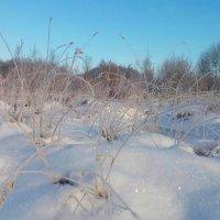 А за городом зима, зима, зима :: Валентина Ломакина