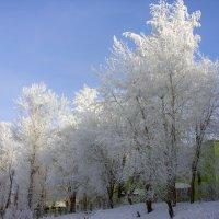 Город Сафоново зима :: Андрей .