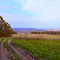 Лесные дороги :: Виктор Шандыбин