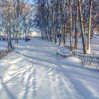 Зима в сквере :: Вячеслав Баширов