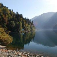 Озеро Рица. Абхазия. Осень. :: Нелли *