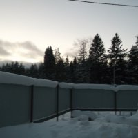 После снегопада :: Svetlana Lyaxovich