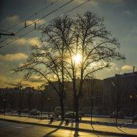 Москва, Ленинградский проспект. Морозный восход. :: Игорь Герман
