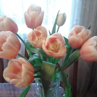 Тюльпаны в вазе :: марина ковшова