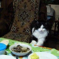 я это не ем.... :: александр дмитриев