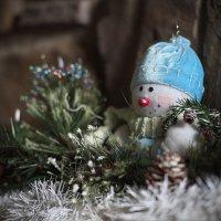 Снеговик :: Alena Nuke