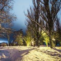 Зимний ночной.. :: Инга Мысловская