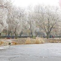 Ура,зима! :: Елена