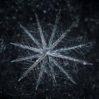 Снежинка :: Алексей Строганов