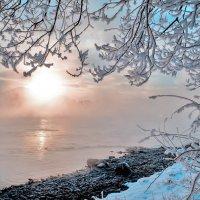 Чудо сказки зимней :: galina tihonova
