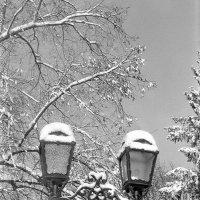 Зимний этюд с фонарем :: Сергей Тарабара