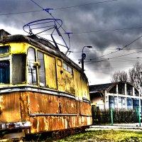 Forgotten tram :: alexander zvir