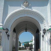 Ворота открыты :: марина ковшова