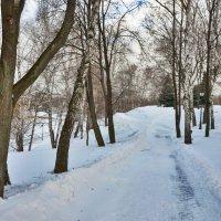 Зимний пейзаж. :: Oleg4618 Шутченко