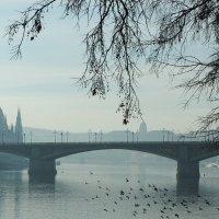 утро в Будапеште :: Сергей Комолов