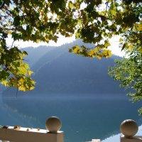 Озеро Рица. Осень. Дача Сталина. :: Нелли *