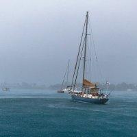 на Гренаде дождь :: svabboy photo
