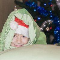 Новогоднее настроение! :: Роман Царев