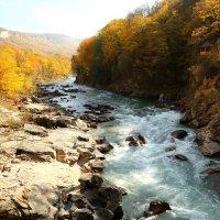 Река Белая. Адыгея. :: Александр Киргизов