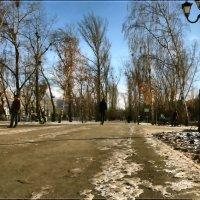 Морозный денёк. :: Anatol Livtsov